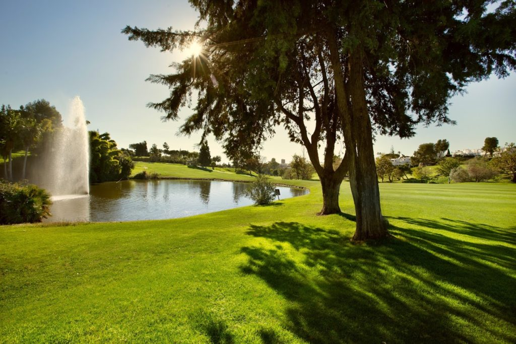 Club de golf Aloha - Golf Circus