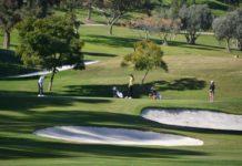 Copas de Andalucía masculina y femenina - Golf Circus